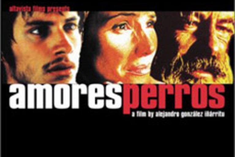 Amores Perros by Alejandro González Iñárritu