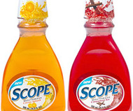 Citrus Splash & Cinnamon Ice Scope