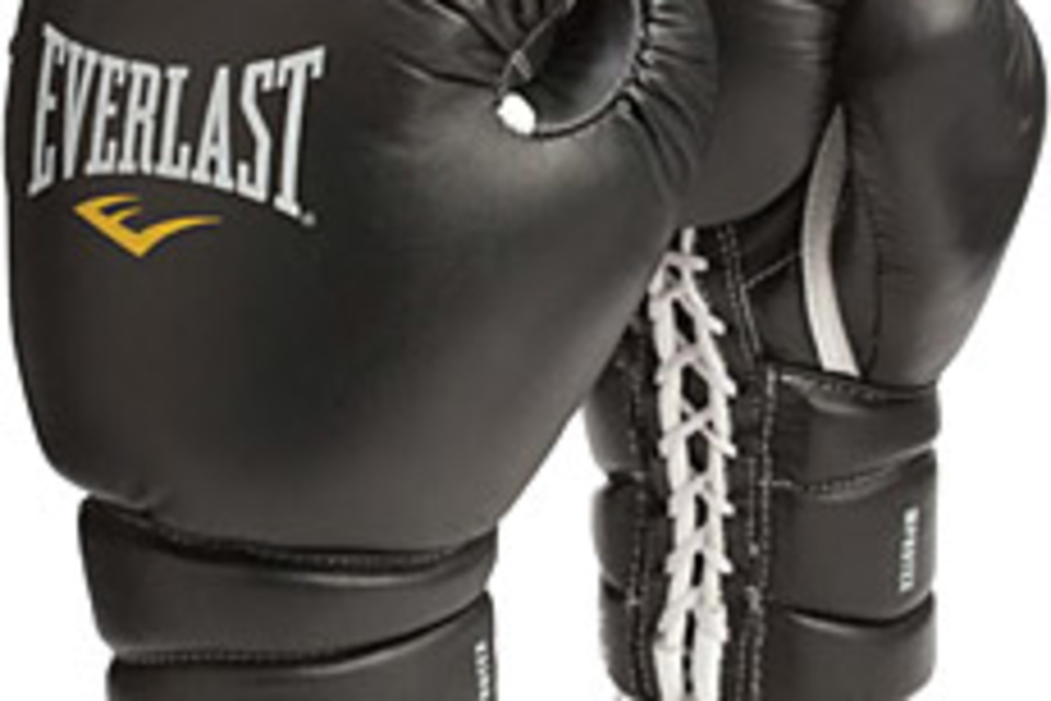 Everlast Protex3 Training Boxing Gloves