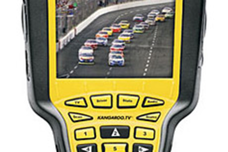 NASCAR Nextel FanView