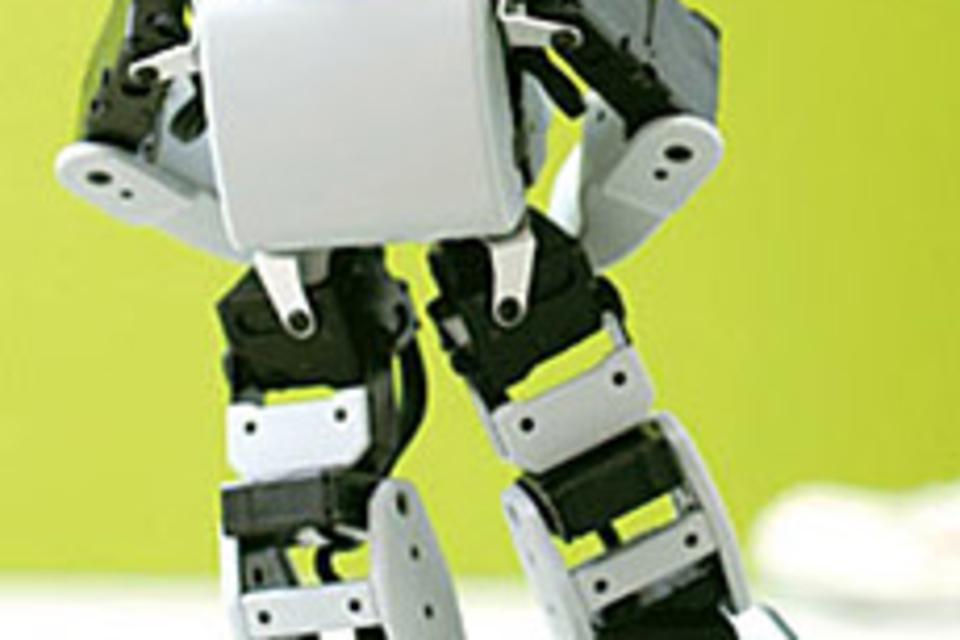 Akazawa PLEN Robot