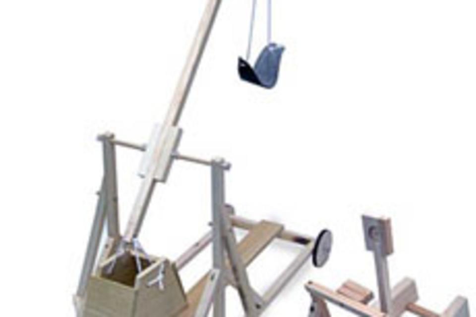 Mini Catapult and Trebuchet