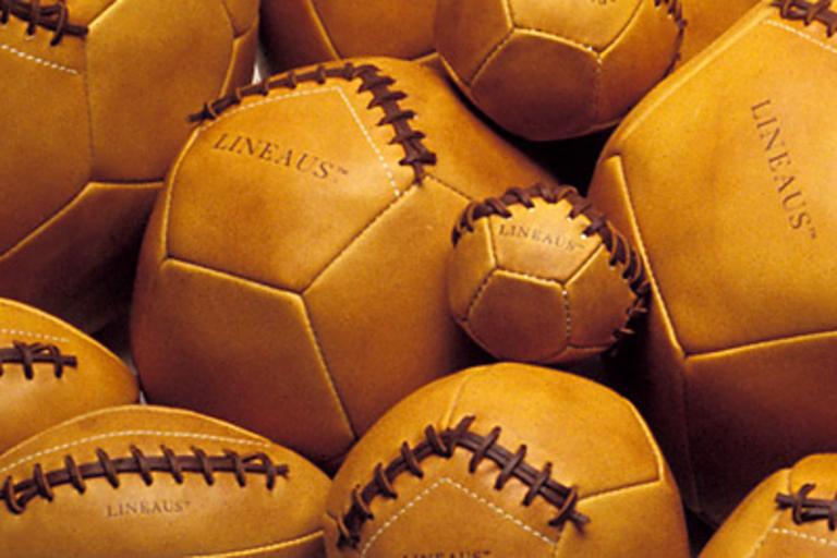 Lineaus Medicine Balls