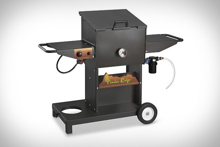 Timber Ridge Backyard Host Deep Fryer