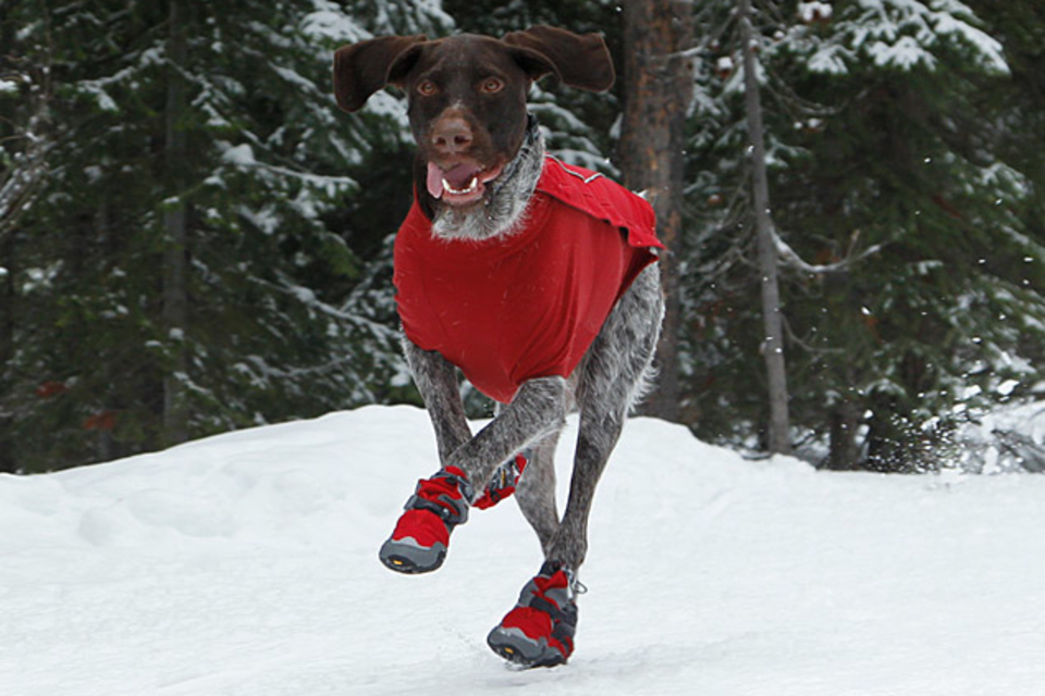 Bark'n Boots Polar Trex