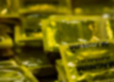 Trojan Condoms Unrolled