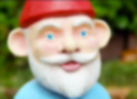 Garden Gnome Situation