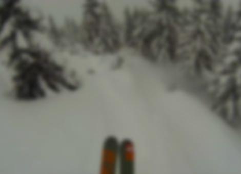 Insane Forest Ski POV