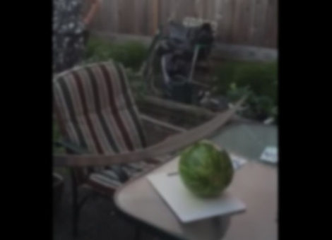 How Not To Cut A Watermelon