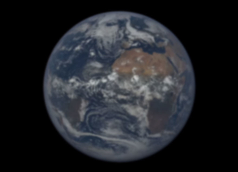 One Year on Earth From One Million Miles Away
