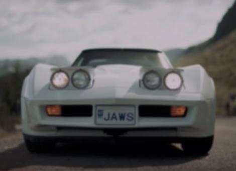 Icelandic C3 / Coldvette