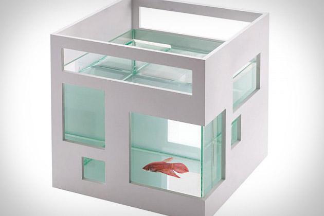 umbra fish hotel uncrate