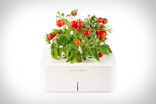 Click & Grow Smartpots