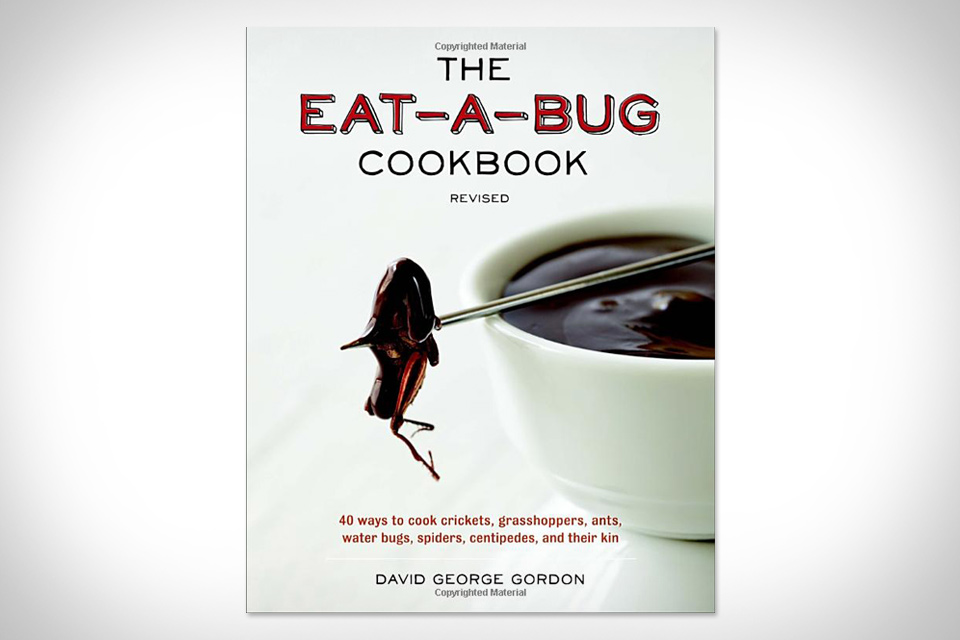 The Eat-A-Bug Cookbook