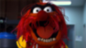 muppets 2018 movie release date - 400×221