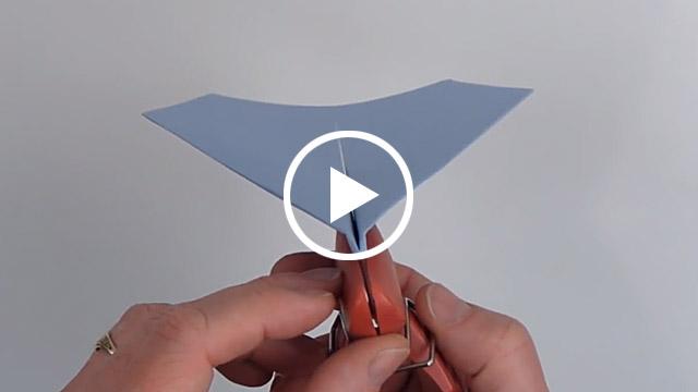 world record paper airplane pdf