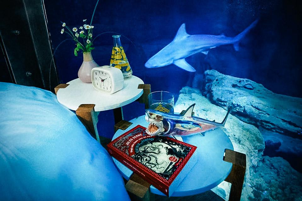 shark aquarium underwater bedroom uncrate