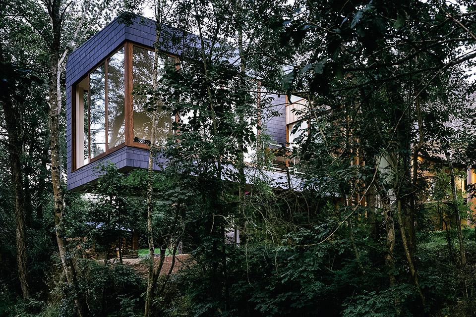 Ty Hedfan House