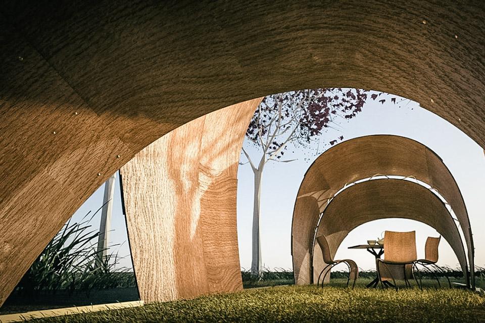 Armadillo Tea Canopy