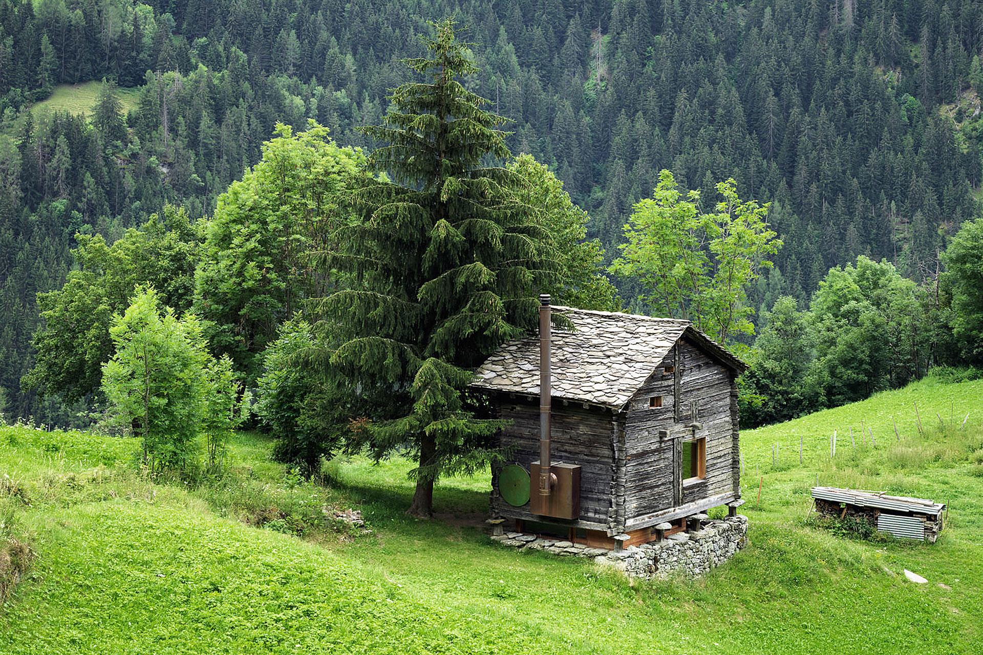 Sarreyer Cabin