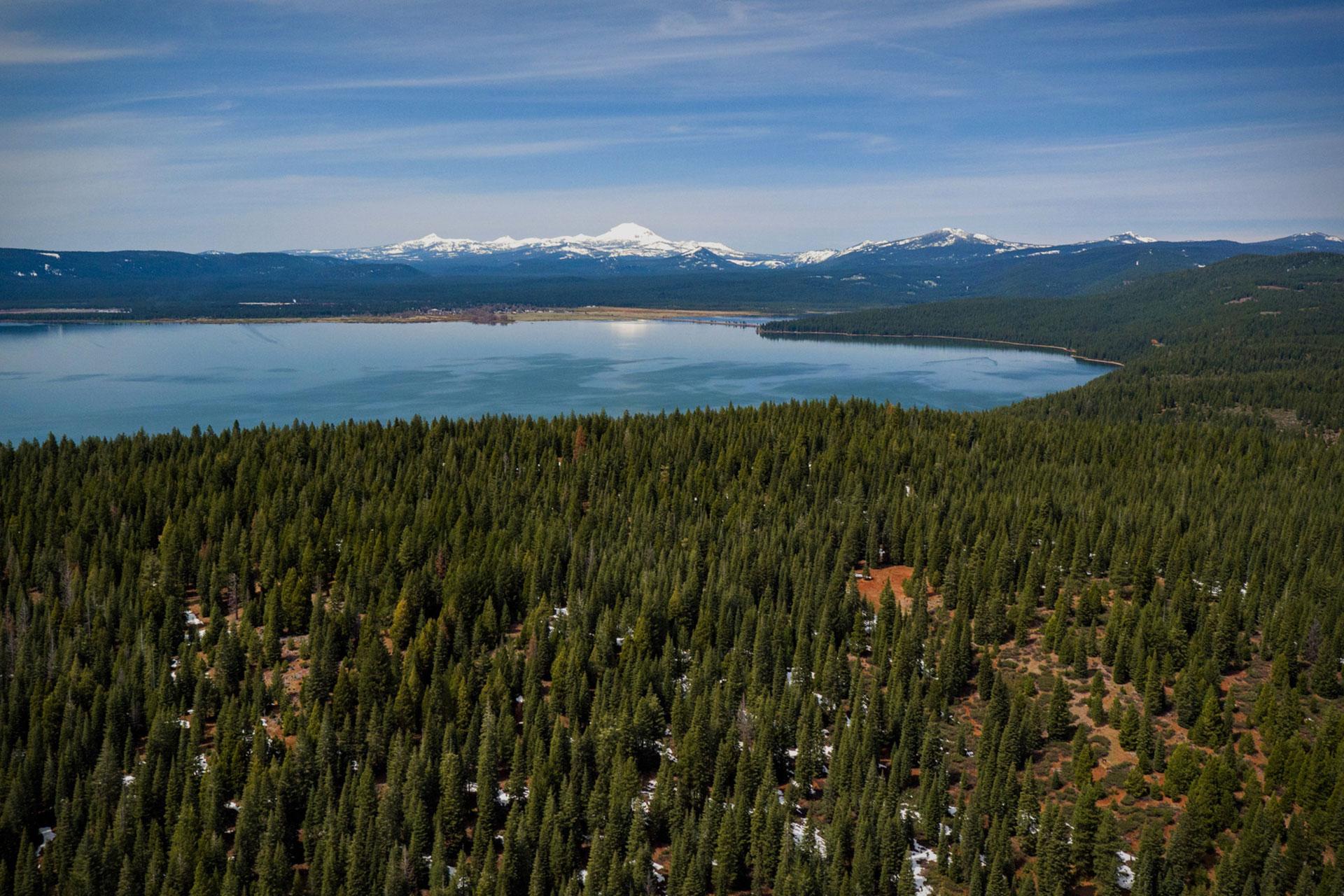 Lake Almanor Shoreline