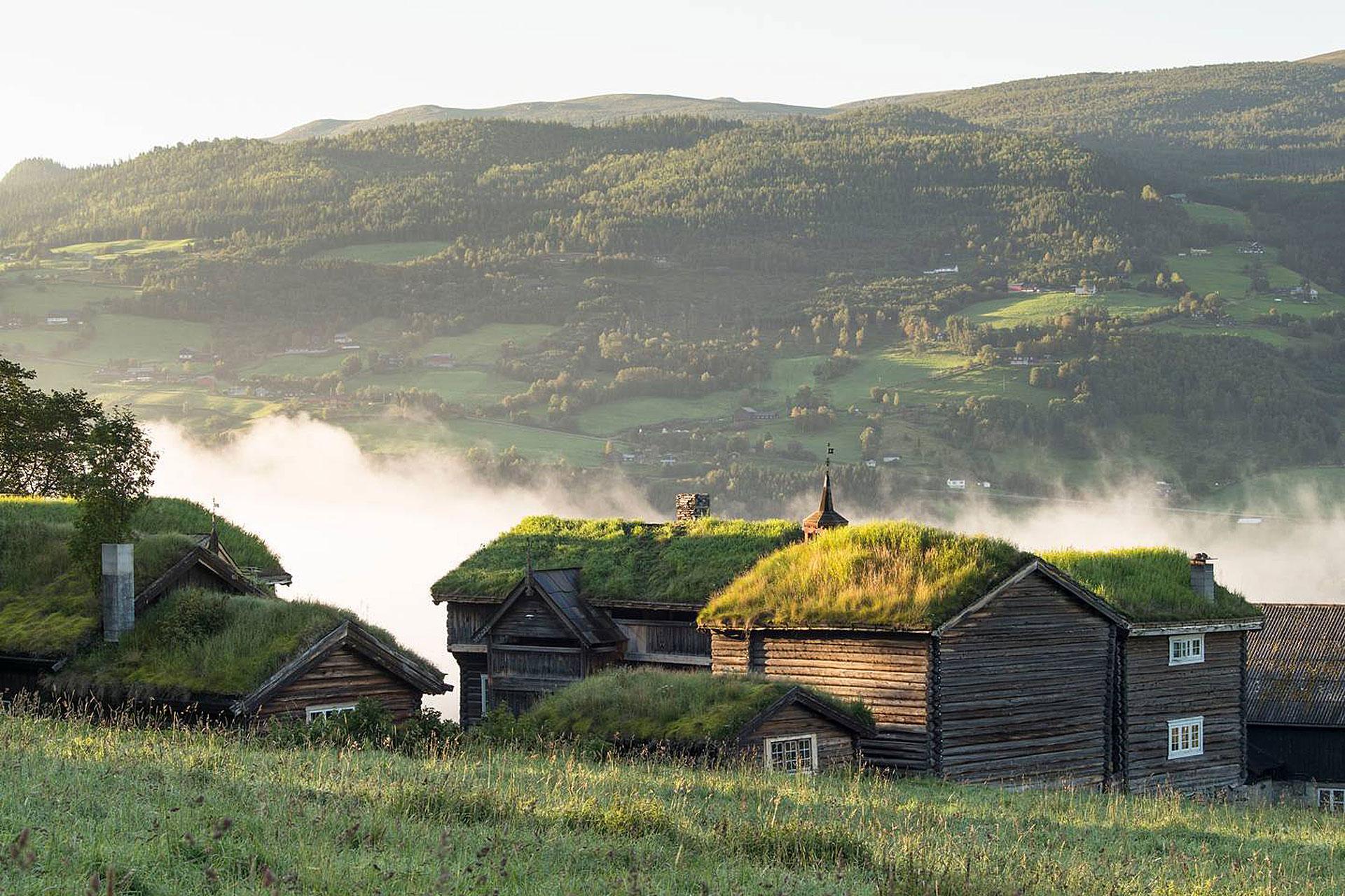 Nordigard Blessom Farm