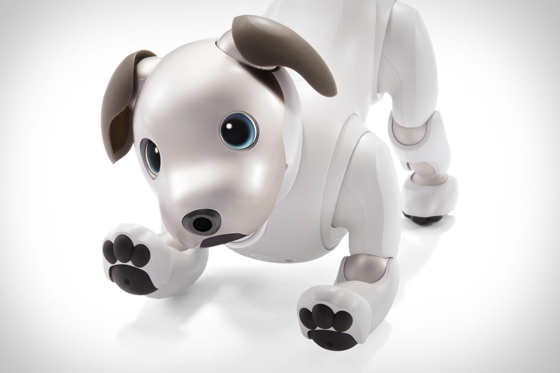 Sony Aibo Entertainment Robot