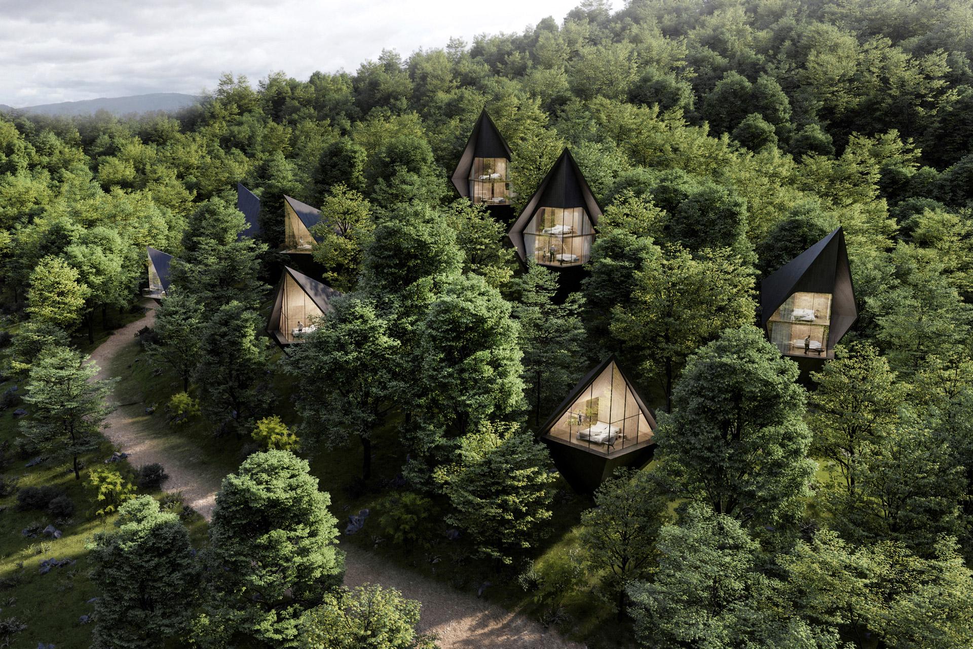 Dawson Lake Tree Houses